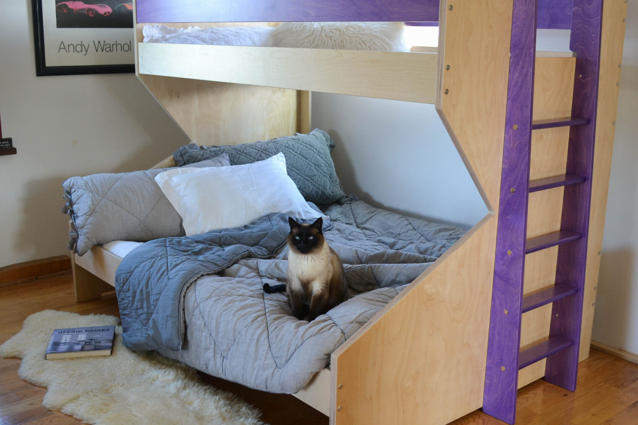 z bed with purple accents and a siamese cat sitting on the bed, made out of birch multiply and finished in an eco friendly varnish
